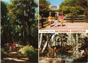 Mataranka Homestead Australia Northern Territory NT Unused Vintage Postcard C3