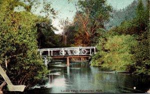 Michigan Kalamazoo Lovers Lane 1908