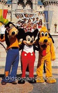 Goofy, Mickey Mouse & Pluto Walt Disney World, FL, USA 1981