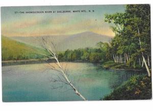 Androscoggin River At Shelburne New Hampshire