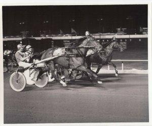 SPORTSMAN'S Park, Harness Horse Race, MISTY RAQUEL winner, July 7, 1979