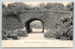 Buffalo New York~Ivy Covered Bridge over Delaware Avenue~Road Tunnel~1906 B&W