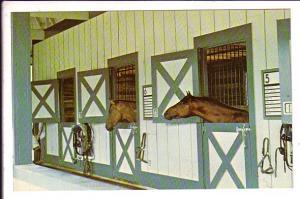 Kentucky Horse Park, Race Training