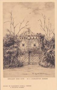 Wrought Iron Gate In A Charleston Garden Charleston South Carolina Albertype