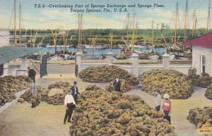 Florida Tarpon Springs Overlooking Part Of Sponge Exchange and Sponge Fleet C...