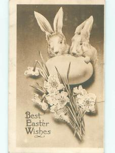 Edge Tear 1911 easter BUNNY RABBITS HIDING BEHIND LARGE EGG hr2278