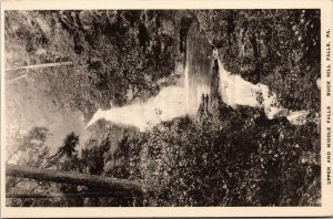 Postcard PA Pennsylvania Buck Hill Falls Upper and Middle Waterfall Unposted