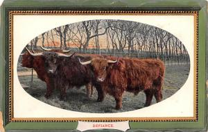 Bull Unused