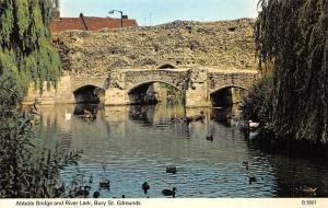 Bury St. Edmunds, Abbots Bridge and River Lark, ducks