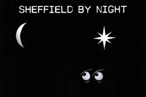 NEW Postcard, Sheffield by Night, Humor, Novelty, Fun, Funny DI5