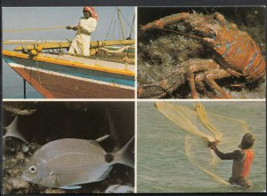 Saudi Arabia Postcard -  Views of Fishing  Y75