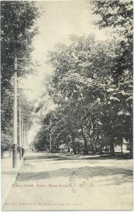 Prince Street View in Truro, Nova Scotia, Canada, 1906 Divided Back