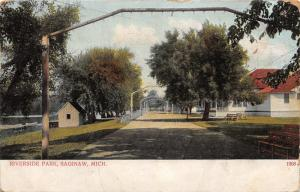 Saginaw Michigan~Riverside Park~Archways over Road~Shed by Lake~1909 Postcard
