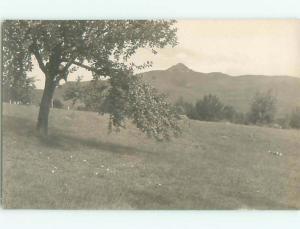 Old rppc NATURE SCENE Great Postcard AB0662