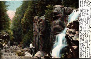 New Hampshire White Mountains Franconia Notch The Casacde In Th Flume 1906