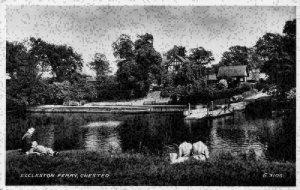 Eccleston Ferry Chester River Village Postcard