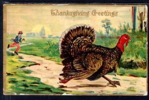 Thanksgiving Greetings,Man Chasing Turkey