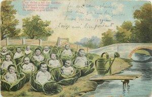 Multi new born babies cabbages fantasy vintage surrealism postcard