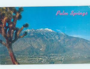 Pre-1980 PANORAMIC VIEW Palm Springs - Near Anaheim & Los Angeles CA i0777