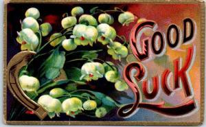 Vintage Large Letter Embossed Postcard GOOD LUCK White Flowers c1910s