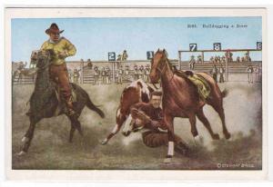 Bulldogging Steer Cowboy Western Rodeo 1920s postcard