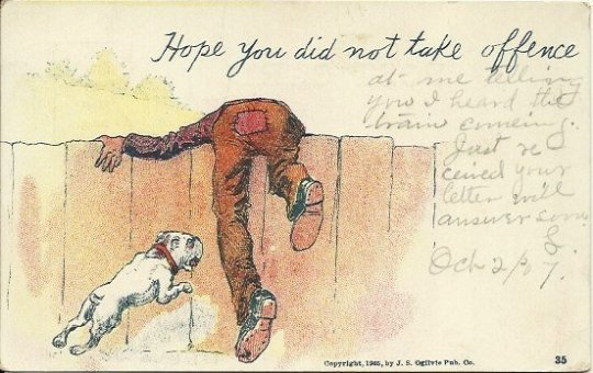 Antique Undivided Back UB Postcard Comic Hope You Did Not Take Offence 1905