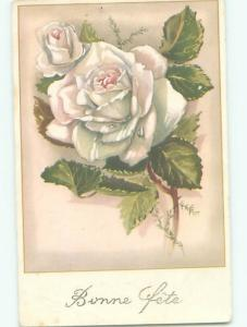 Very Old Foreign Postcard BEAUTIFUL FLOWERS SCENE AA4895
