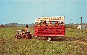 D27/ Springfield Ohio Postcard Chrome Crawford's Market Campgrounds Tractor Ride