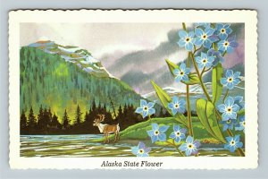 AK-Alaska State Flower the Forget-Me-Not Myosotis Alpestris Chrome Postcard
