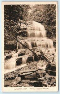 TRYON, North Carolina NC ~ PEARSONS FALLS Polk County Albertype Postcard