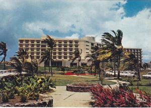Palm Trees, Gardens Outside L'hotel Meridien, Martinique, Caribbean, Antilles...