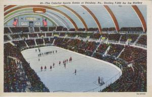 Hershey Sports Arena ~ Hershey PA Pennsylvania ~ Ice Hockey Bears Postcard