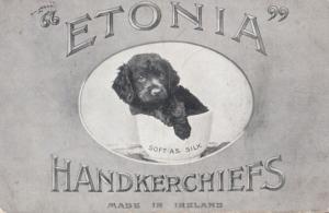 Etonia Handkerchief Dog Silk Post Victorian Irish WW1 War Advertising Postcard