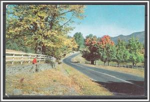 United States - Typical Highway Scene