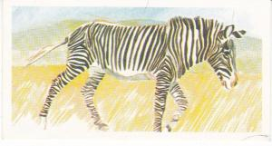 Trade Card Brooke Oxo Vanishing Wildlife No 23 Grevy's Zebra