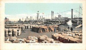 LP67  New Orleans Louisiana LA  Postcard Cotton Levee Detroit Publishing