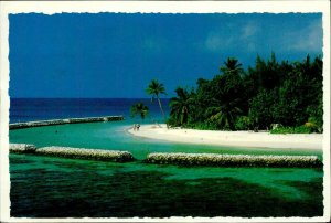 JD0017 maldives islands arabian sea indian ocean palmtree sand beach bird stamp