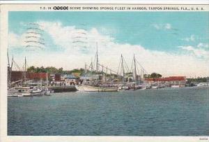 Florida Tarpon Springs Scene Showing sponge Fleet In Harbor