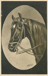 Horse M. Schonian artist signed vintage postcard