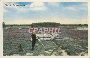 Old Postcards Mooi Nederland