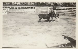 RP; VILLA ACUNA, Mexico, 1910-20s; Bull Fighting # 2