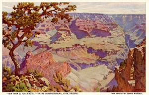 AZ - Grand Canyon National Park. View from Hotel El Tovar   (Fred Harvey)