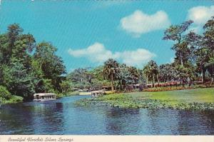 Florida Silver Springs Beautiful Florida's Silver SpringsQuiet Electrically P...