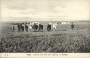 Montana Cowboys Rep's String of Horses Publ in Chinook c1910 Postcard rpx