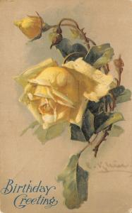 Catherine Klein~Yellow Rose Bowed Down~Ascending Buds~Shadows~Embossed~1907