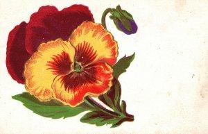 Vintage Postcard 1909 Beautiful Orange Red Pansies Flowers Bloom Floral Artwork