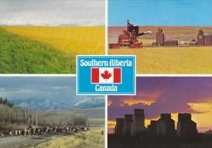 Farming and Ranching In Southern Alberta Multi View Canada