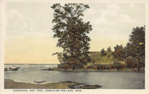 LPS78 GENEVA-ON-THE-LAKE Ohio Historical Oak Tree Postcard