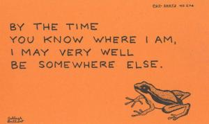 By The Time You Write I May Be Somewhere Else Lost Frog Motto Proverb Postcard
