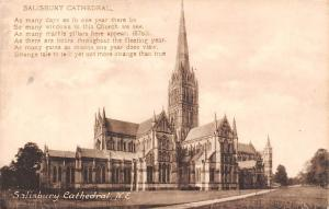 Salisbury Cathedral N.E. Dom Cathedrale